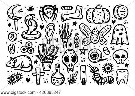 Black Scary Ink Vector Halloween Illustration. Skull, Druid Knife, Insect, Ghost, Rat, Poison, Eye,
