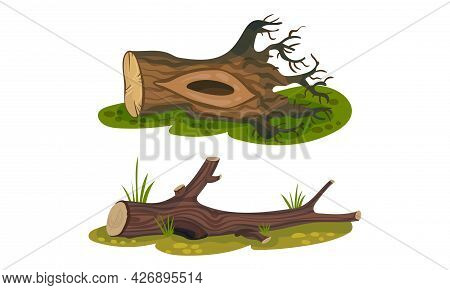 Cut Log Or Snag With Dry Branches As Coarse Woody Debris Vector Set