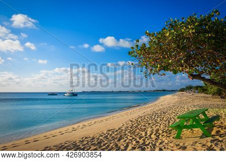 Green Wooden Table By A Tree By The Caribbean Sea On Seven Mile Beach In Grand Cayman
