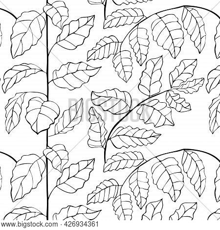 Seamless Pattern Of Linear Leaves Of Eggplant