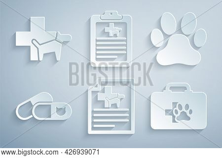 Set Medical Certificate For Dog Or Cat, Paw Print, Cat And Pills, Pet First Aid Kit, Clinical Record