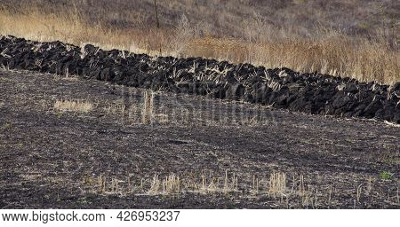 Plowing Black Soil In Autumn Field With Boulders Of Land