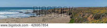 San Simeon, Ca, Usa - June 8, 2021: Pacific Ocean Coastline. Panorama, Elephant Seals Rest, Some Whi