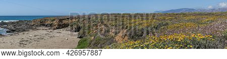 San Simeon, Ca, Usa - June 8, 2021: Pacific Ocean Coastline. Panorama Landscape Near Point Piedras B