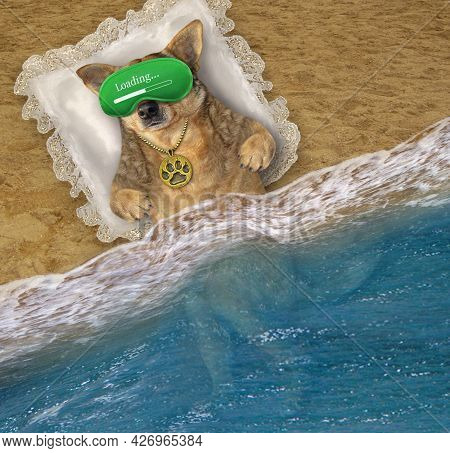 A Beige Dog In A Green Mask Sleeps On A Pillow On The Beach Of The Sea.