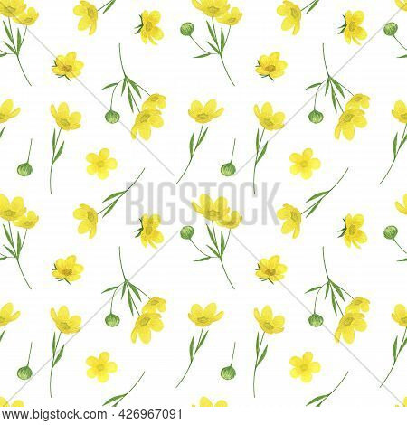 Yellow Buttercups, Wild Flowers Seamless Pattern Watercolor Illustration, Summer Meadow Repeat Ornam