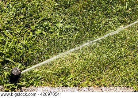 A Jet Of Water From The Hose Of Automatic Lawn Sprinkler Watering Green Grass. Sprinkler With An Aut
