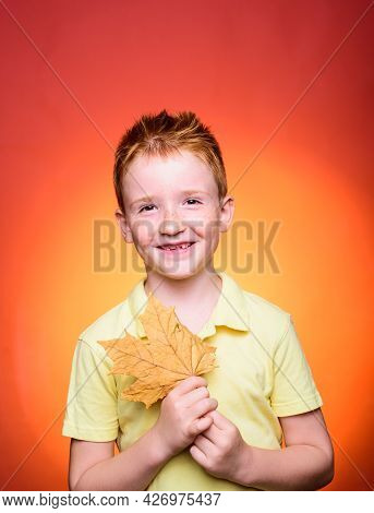 Redhead Boy - Autumn Concept. Copy Space For Advertising. Autumnal Foliage. Happy Childhood. Autumn