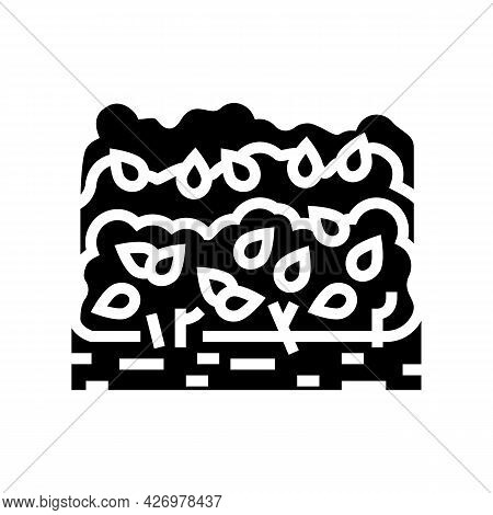 Cultivation Tea Leaves Glyph Icon Vector. Cultivation Tea Leaves Sign. Isolated Contour Symbol Black