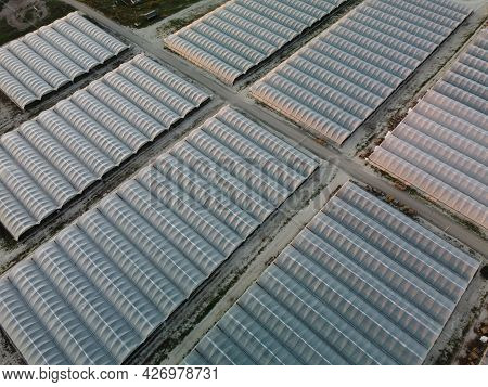Aerial Drone View Of Huge Areas Greenhouse For Growing Vegetables. Greenhouse Farming, Agriculture I