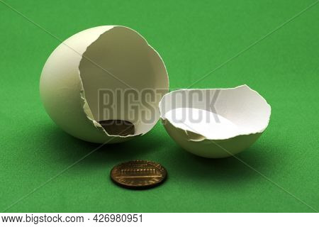 One-cent Coins In The Shell Of A Broken Egg Business Startup Concept Fundamentals Of Economics. High
