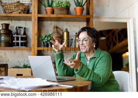 Smiling Senior Woman Filling Forms Online In Home Interior. Online Working From Home.