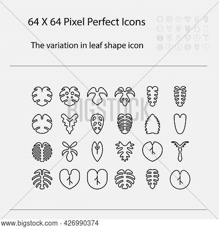 The Variation Of Leaf Shape Icon. Variation Of Leaves Vector Outline Icon