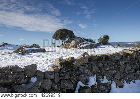 Snowy Landscape In The Municipality Of Colmenar Viejo, Spain, After The Storm Filomena