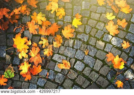 Background Of Autumn Leaves Fallen Down On Cobblestone Pavement.