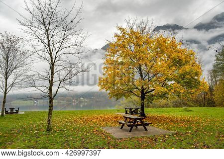 Moody Autumn Landscape With Bare Trees And Benches On Mountain Lake Shore.