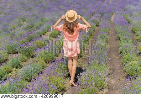 Young Woman With Pink Dress And Hat Enjoying The Beauty And Fragrance Of A Filed Of Lavender In Bloo