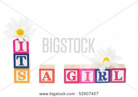 Letter Blocks Spelling 'its A Girl' With Flowers