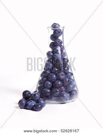 Scientific Blueberries
