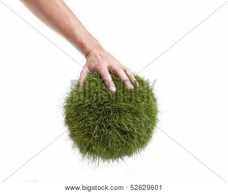 Grass Globe