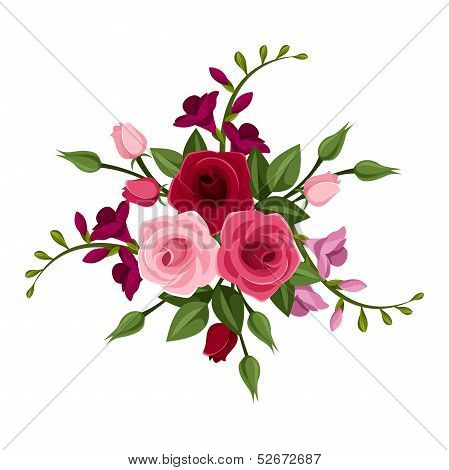 Roses and freesia. Vector illustration.