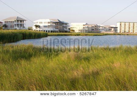 Homes Encroach On Wetlands