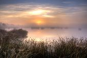 Calm and great misty sunset over swamp in nature poster