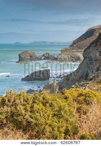 Cornish coast St Agnes North Cornwall England United Kingdom between Newquay and St Ives