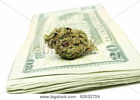 Marijuana Drug Money