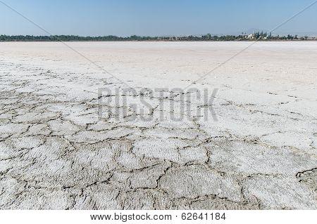 Saltern  In Cyprus