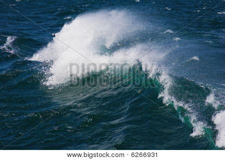 Roaring ocean wave