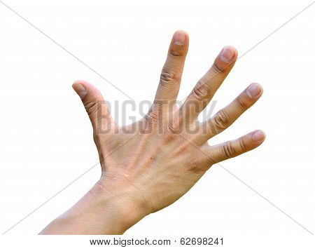 Hand With Open Five Fingers As A Clean Action