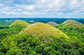 Famous Chocolate Hills natural landmark Bohol island Philippines poster