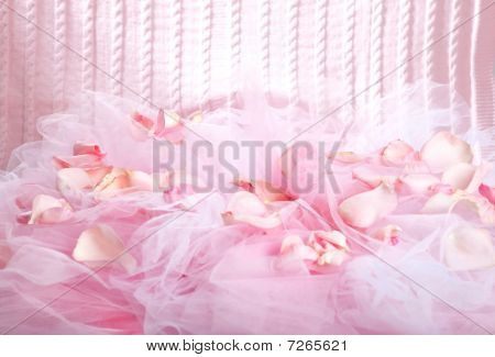 Knitted Fabric And Rose Petals