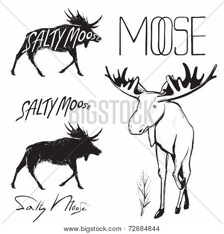 Moose and Lettering Monochrome Illustration