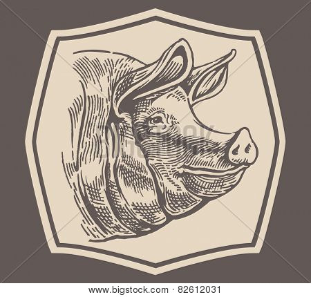 Head to a pig, style engraving.