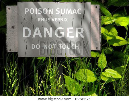 Danger sign indicating Poison Sumac (Rhus Vernix)with sumac plants in foreground. poster