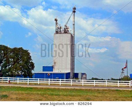 Grain Plant