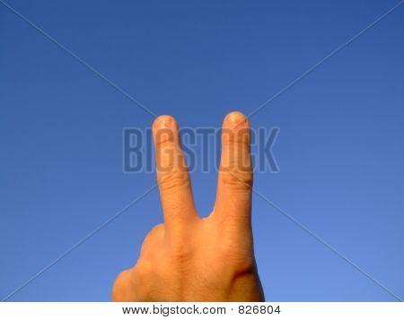Hand series : 2