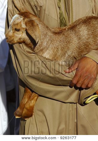 Merchant holding lamb in his arm, Goat market Nizwa Sultanat of Oman poster