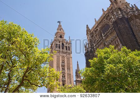 Giralda Tower In Sevilla