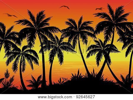 Seamless Landscape, Palms, Ocean and Birds