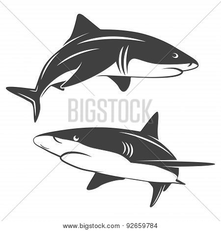 Stylized two sharks