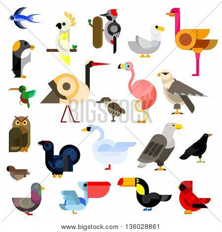 Cartoon flat icons of owl and eagle, swallow and hummingbird, parrot and falcon, penguin, stork and swan, sparrow and pigeon, flamingo and gull, ostrich and raven, pecker and toucan, cardinal and pelican, blackcock and kiwi birds