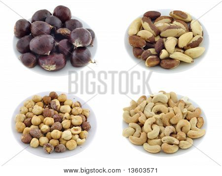 Nuts, Seeds & Appetizers Set #2
