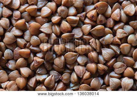 raw dry buckwheat, buckwheat photo, buckwheat grains, buckwheat background, dry buckwheat, organic buckwheat, brown buckwheat