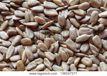 peeled sunflower seeds, sunflower seeds, sunflower seeds background. sunflower seeds photo, raw seeds