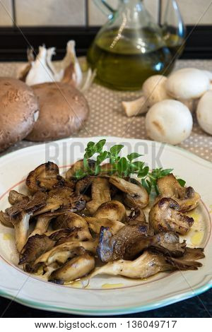 White plate of cooked mushrooms in kitchen
