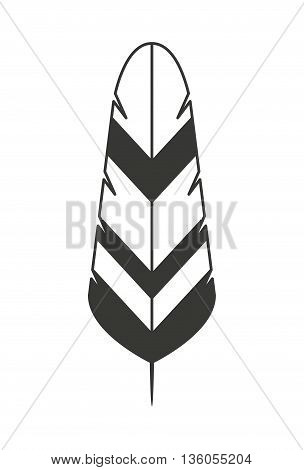 feather isolated icon design, vector illustration  graphic