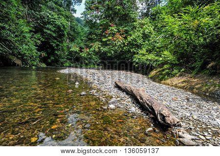 Lanscape from the Landak River in the Rainforest of bukit Lawang